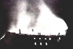 1931_1.jpg